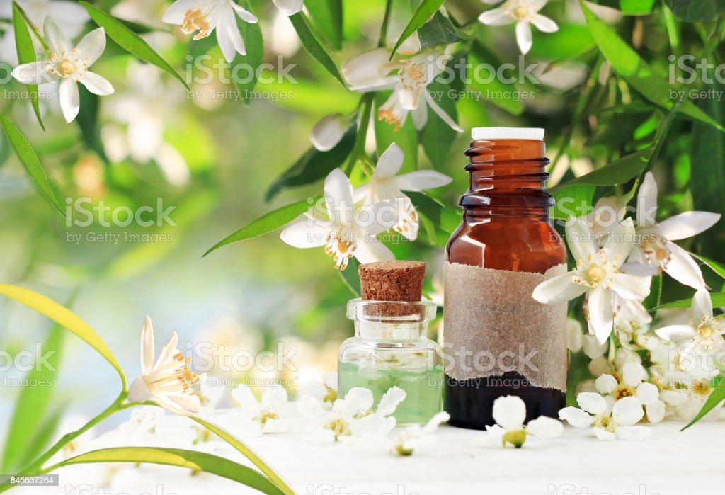 Neroli blossom perfume citrus essential oil bottles spring flowering neroli orange blossom perfume citrus essential oil bottles spring flowering tree with mightylinksfo