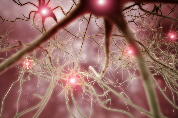 Neurone 3D Illustrazione biomedica - foto stock