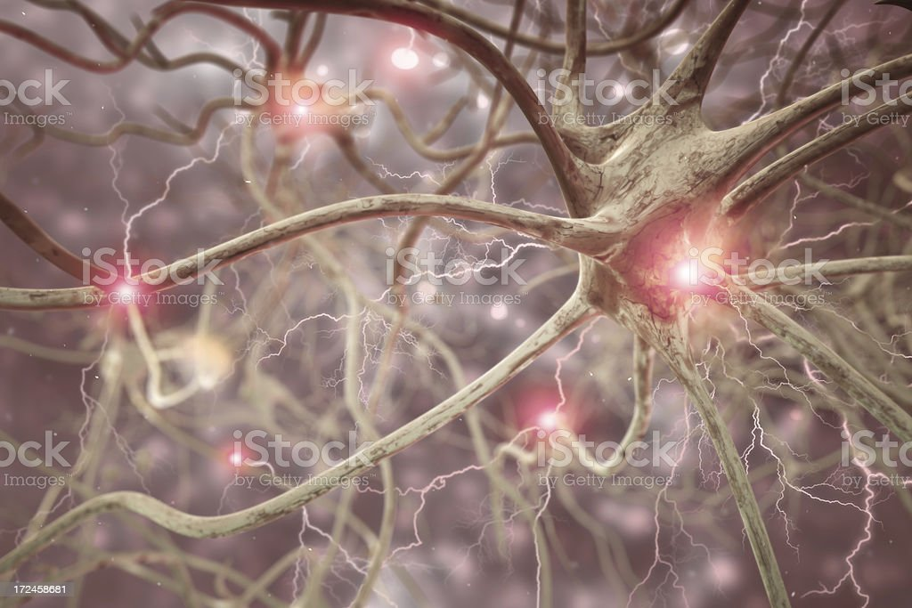 Nerve Cell 3D Biomedical Illustration royalty-free stock photo