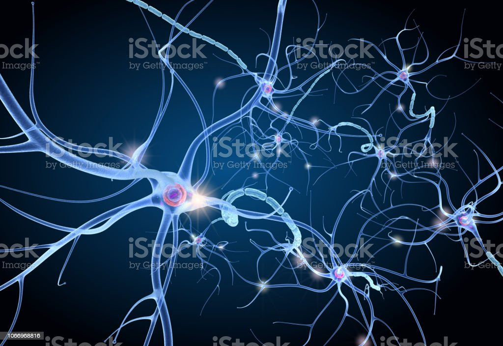 Nerve cell anatomy in details. 3D illustration stock photo