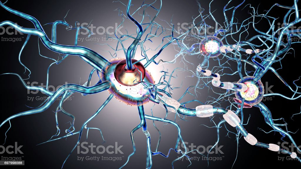 nerve cells, concept for neurodegenerative and neurological disease, tumors, brain surgery. 3d rendering stock photo