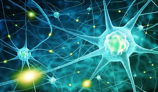 istock nerve cells 479766094