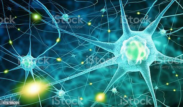 Nerve cells picture id479766094?b=1&k=6&m=479766094&s=612x612&h=nqxr6wruximhlmqak6izp0lfnhcu9gvqwudwh2q8nlq=