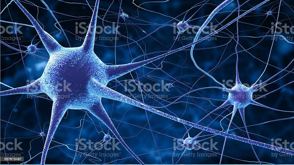 nerve cells stock photo