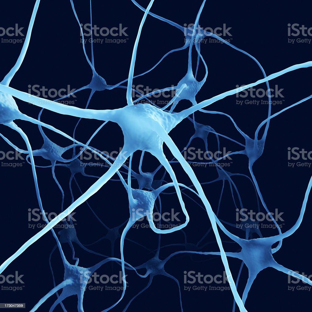 Nerve Cells XL+ royalty-free stock photo