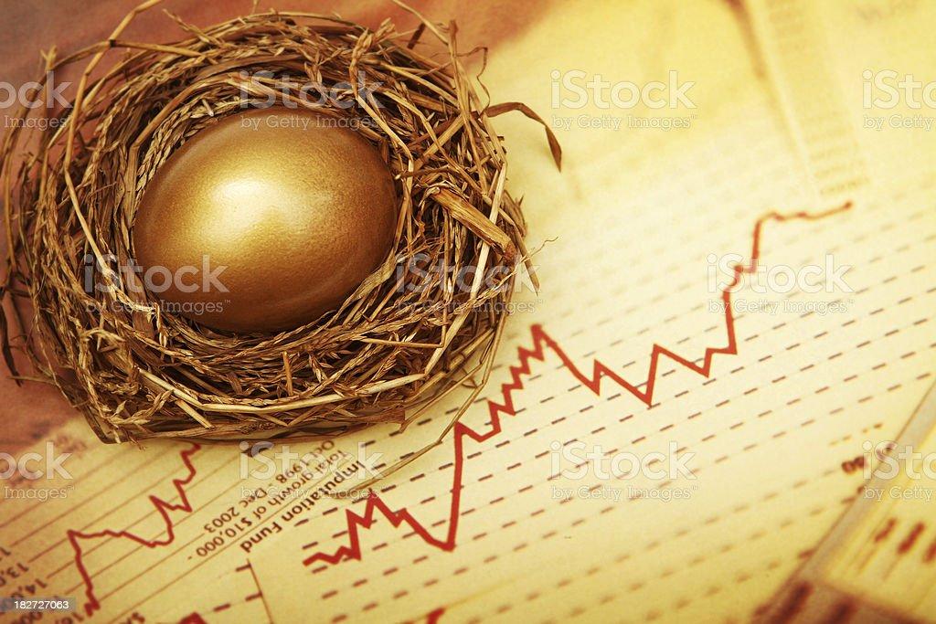 Nest Egg Data stock photo