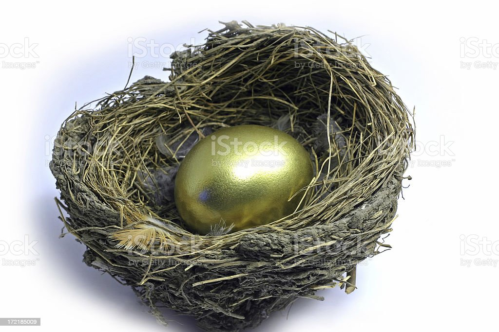 Nest Egg royalty-free stock photo