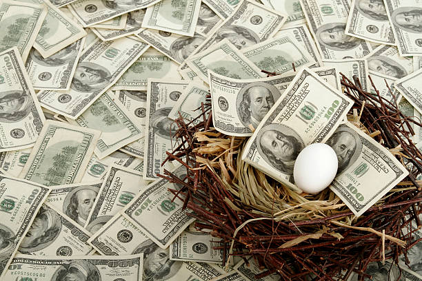Nest Egg A single egg in a nest with $100 bills.FYI $10K used for background. nest egg stock pictures, royalty-free photos & images