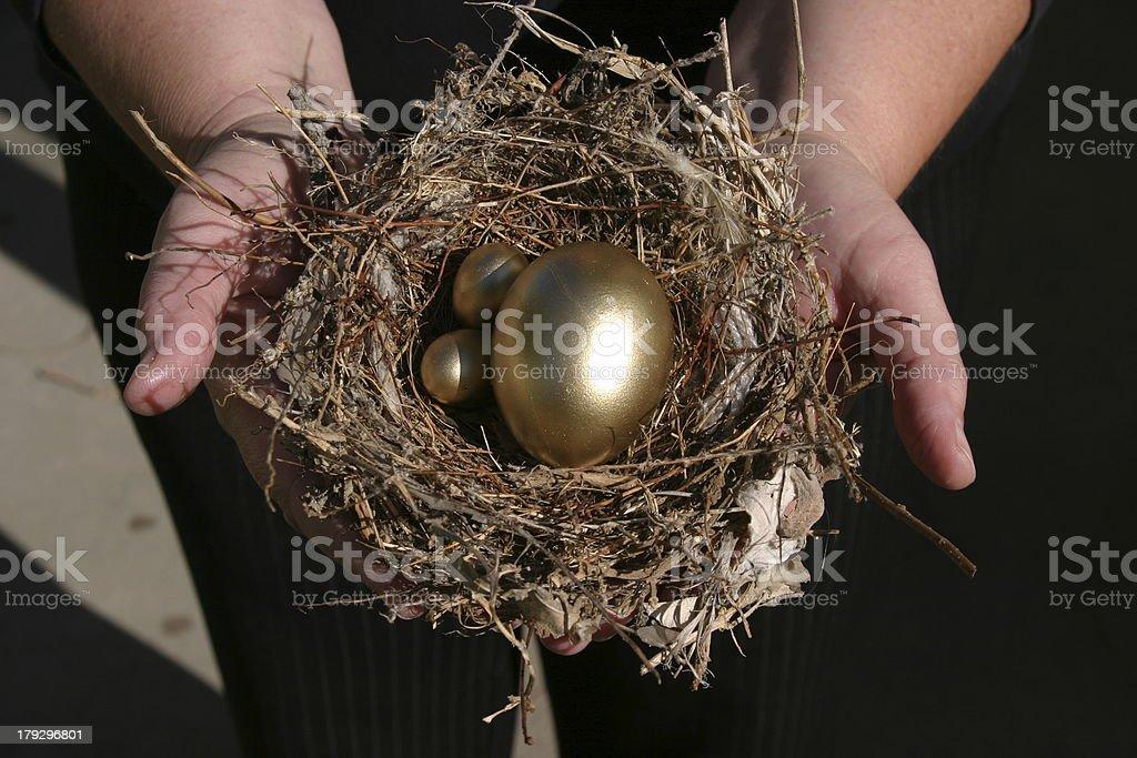Nest Egg stock photo