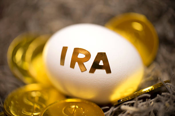 nest egg - ira stock photos and pictures