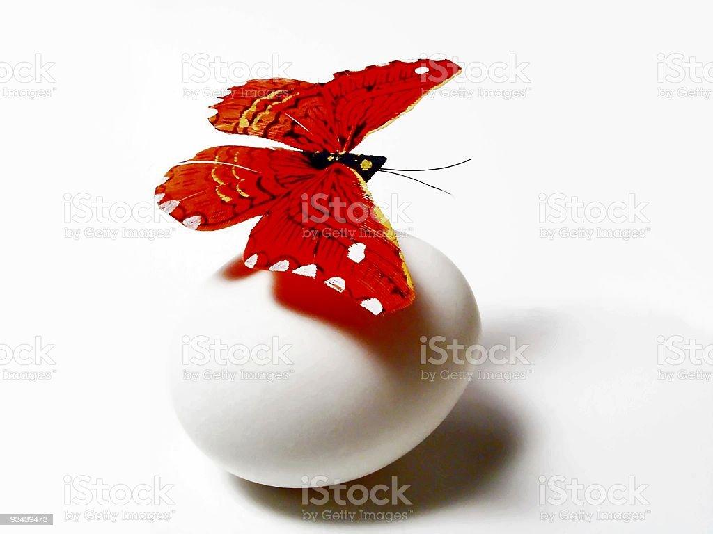 Nest Egg? royalty-free stock photo