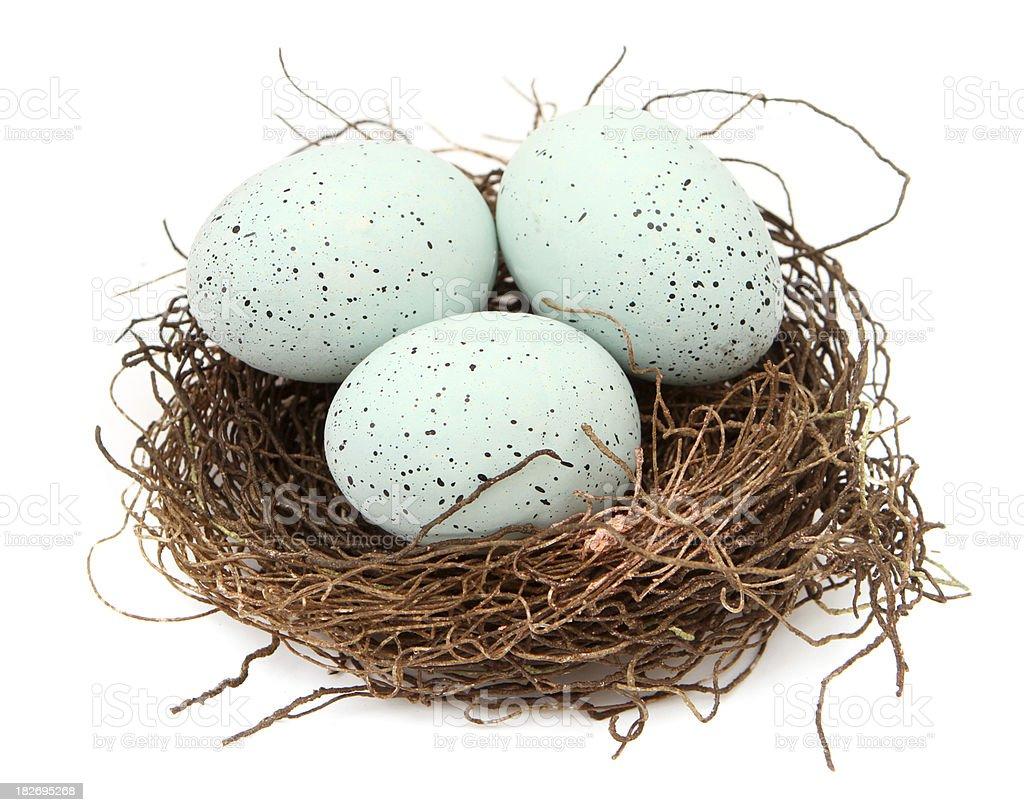 Nest Eggs stock photo