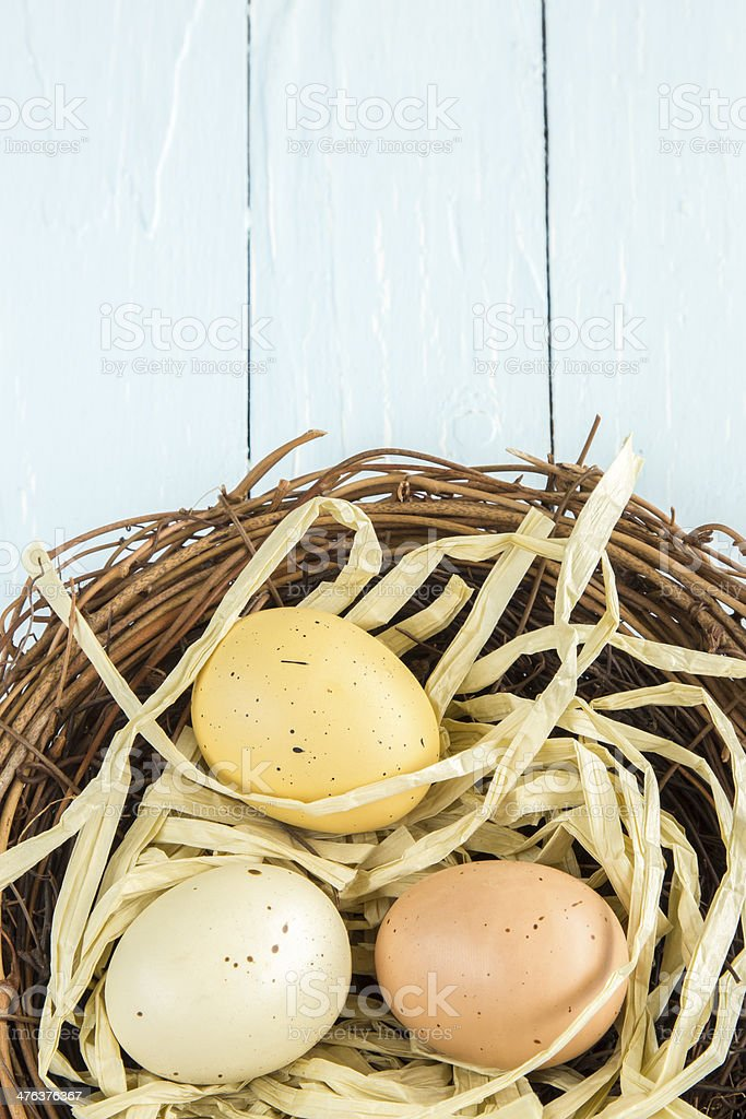 Nest Eggs royalty-free stock photo