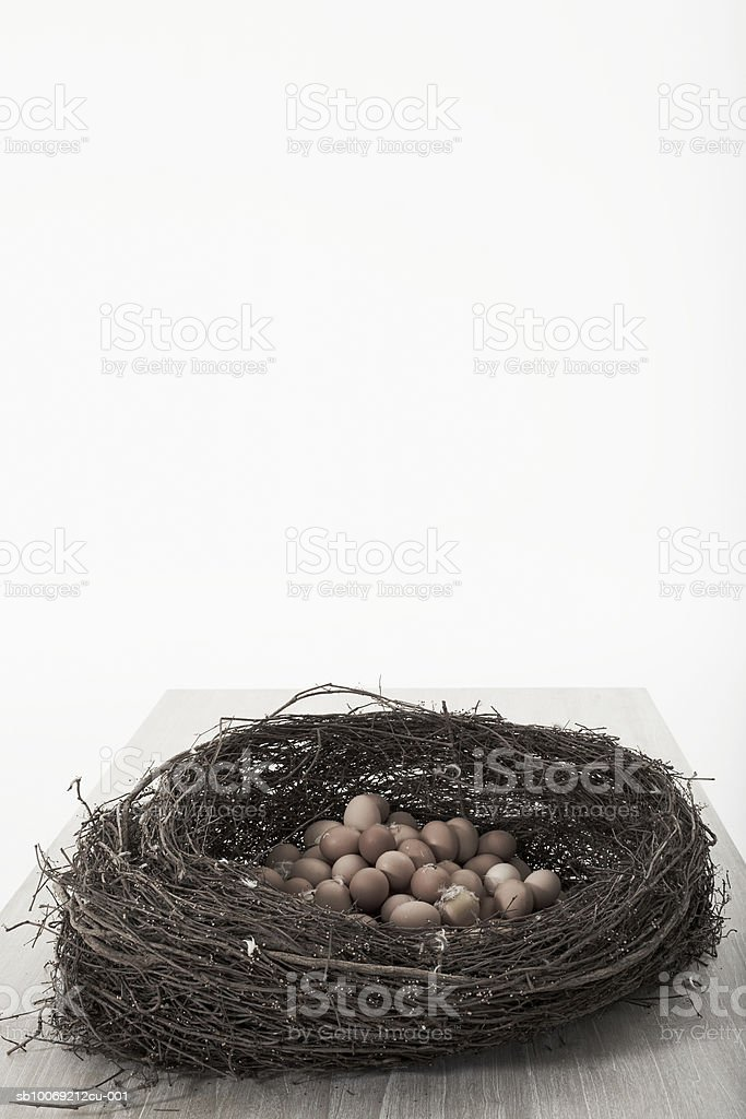 Nest full of eggs, studio shot royalty-free stock photo