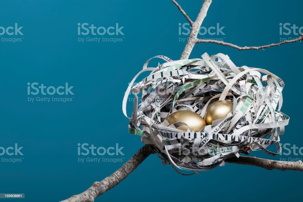 Nest Made of American Currency Horizontal stock photo