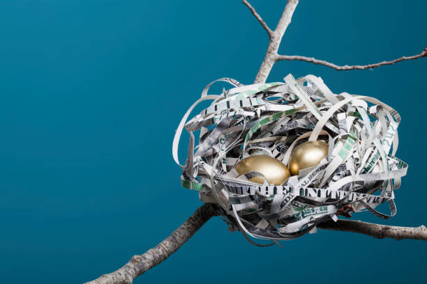 Nest Made of American Currency Horizontal  nest egg stock pictures, royalty-free photos & images
