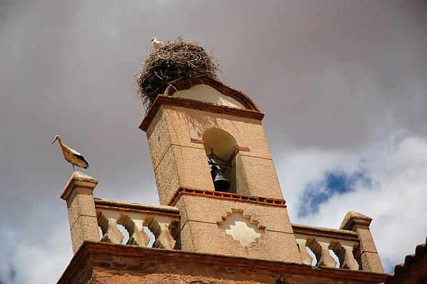 Nest von Weißstörche – Foto
