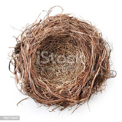 istock Nest 185219347