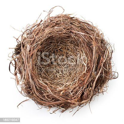 Nest.Some similar pictures from my portfolio: