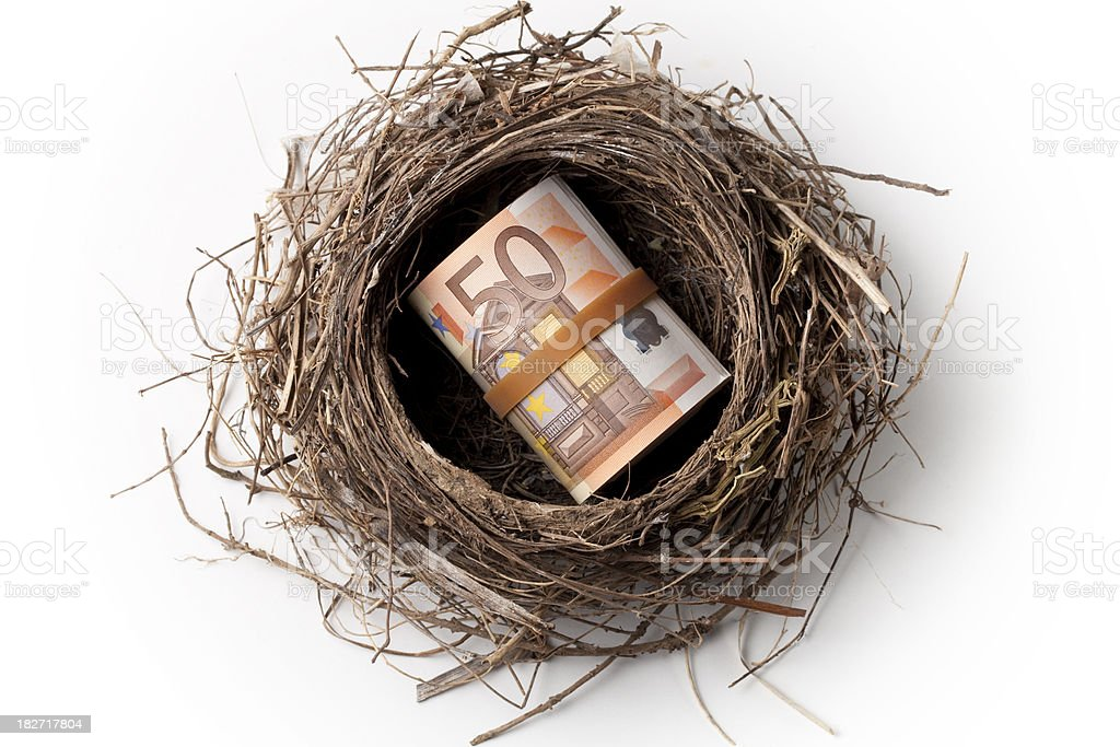 Nest with a roll of  fifthy euro banknote royalty-free stock photo