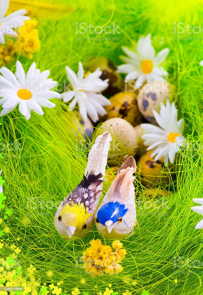 Nest with eggs and birds among flowers royalty-free stock photo