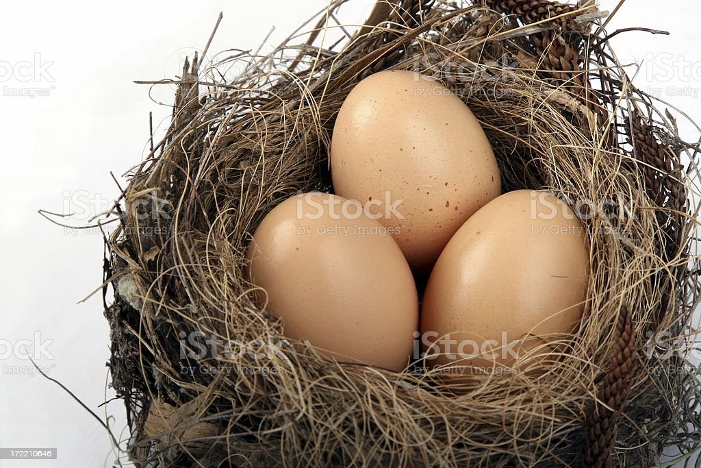 Nest with Eggs on a white background royalty-free stock photo
