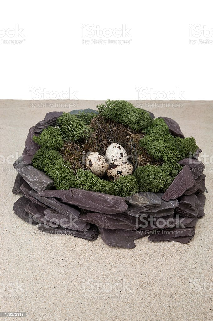 Nest with eggs royalty-free stock photo