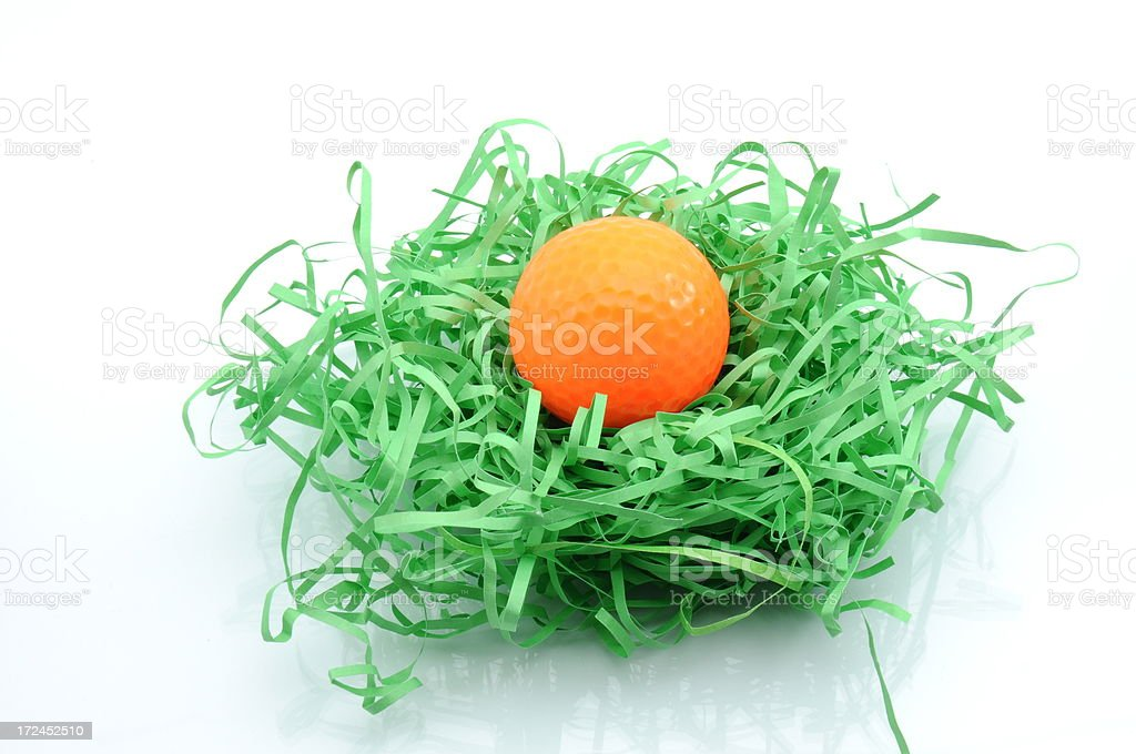 Nest with golf ball. royalty-free stock photo