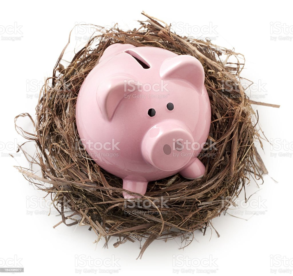 Nest with piggy bank. royalty-free stock photo