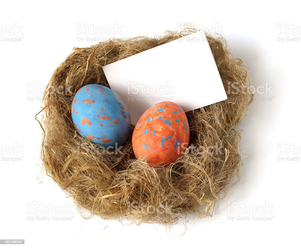 nest with the letter stock photo