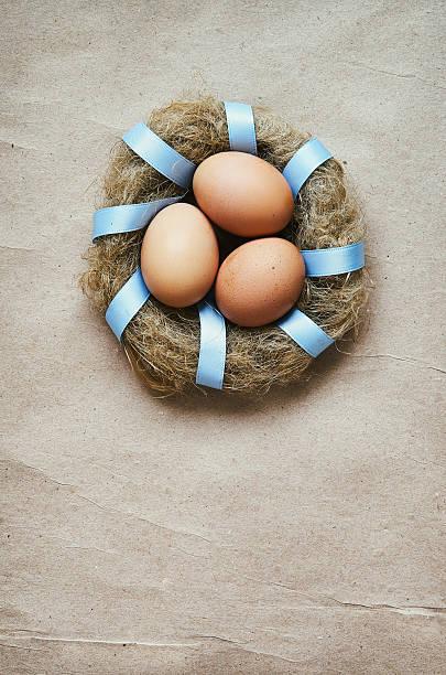 nest mit eiern kranz - jagd kranz stock-fotos und bilder