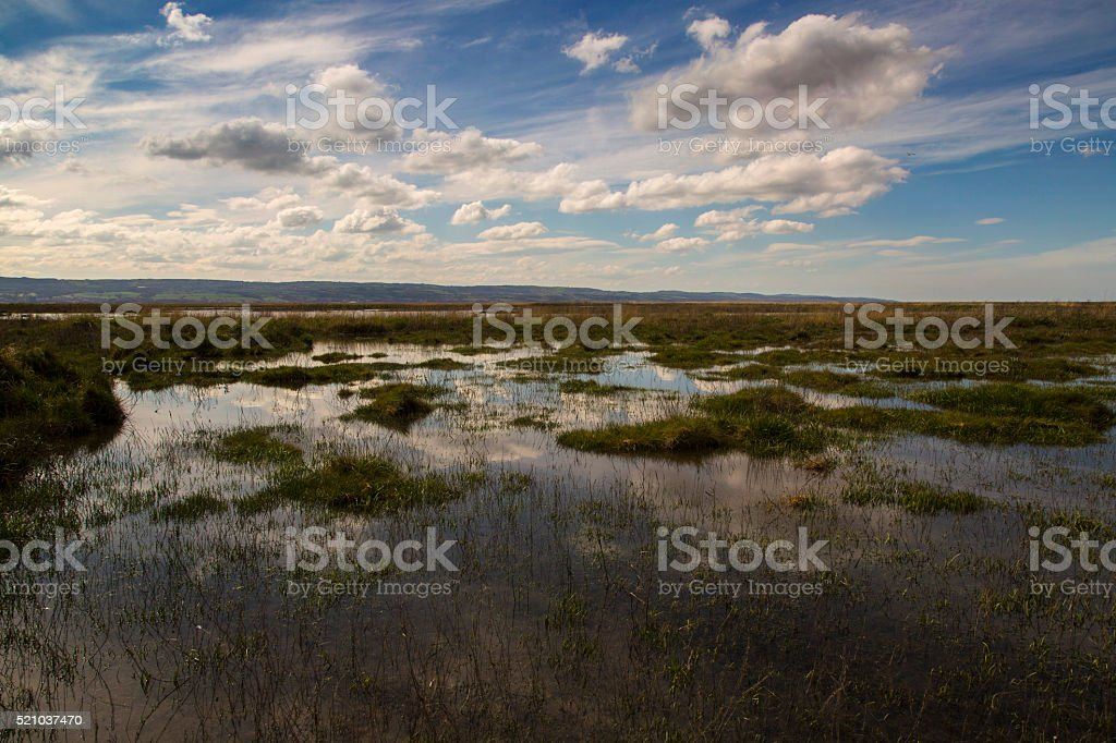 Neston Marshes stock photo