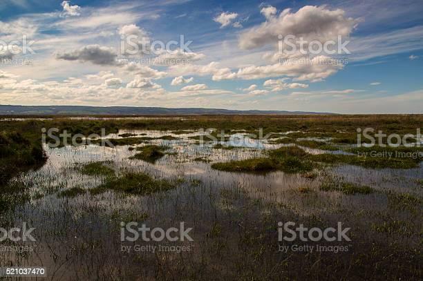 Neston Marshes Stock Photo - Download Image Now