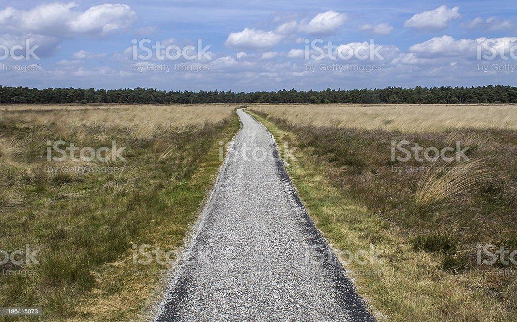 Netherlands landscape royalty-free stock photo