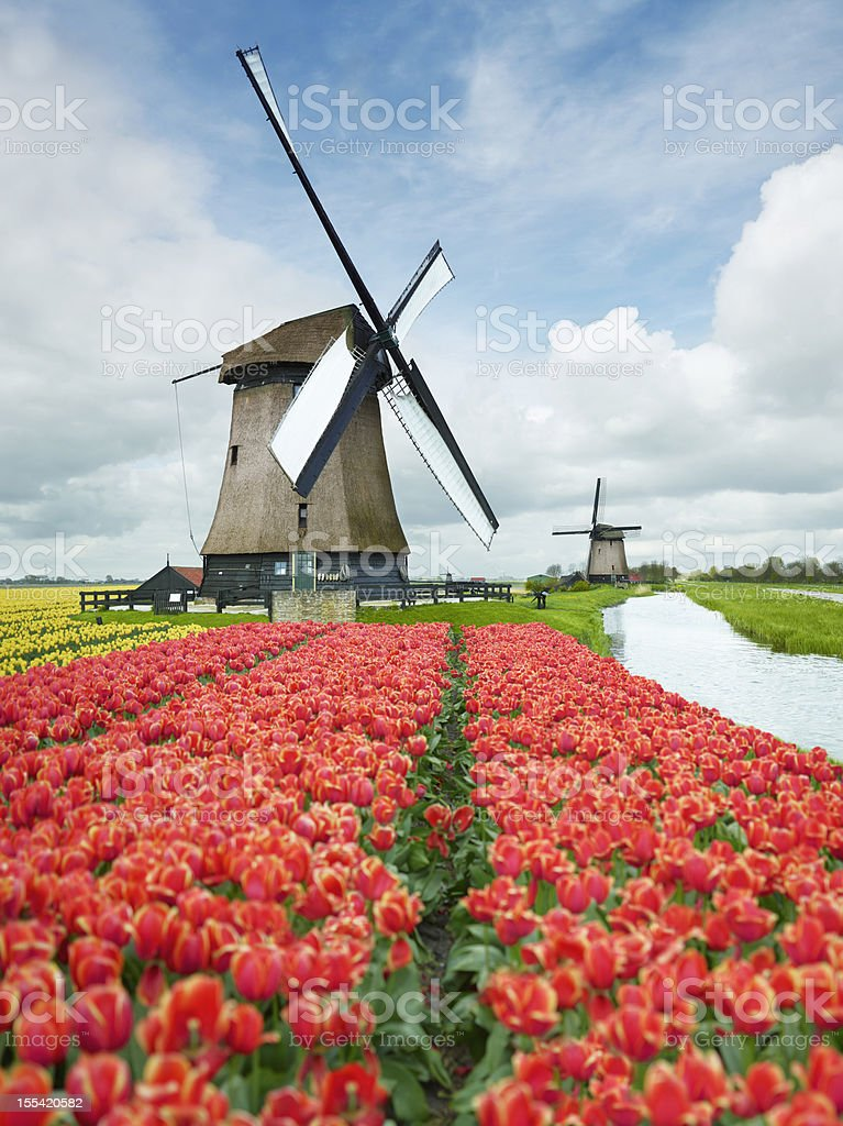 Netherlands stock photo