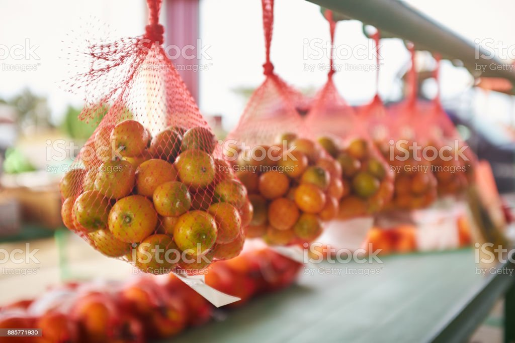 Nets with oranges hanging in row stock photo