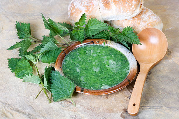 nettle soup a bright vibrent green nettle soup in a rustic style with farmhouse bread stinging nettle stock pictures, royalty-free photos & images