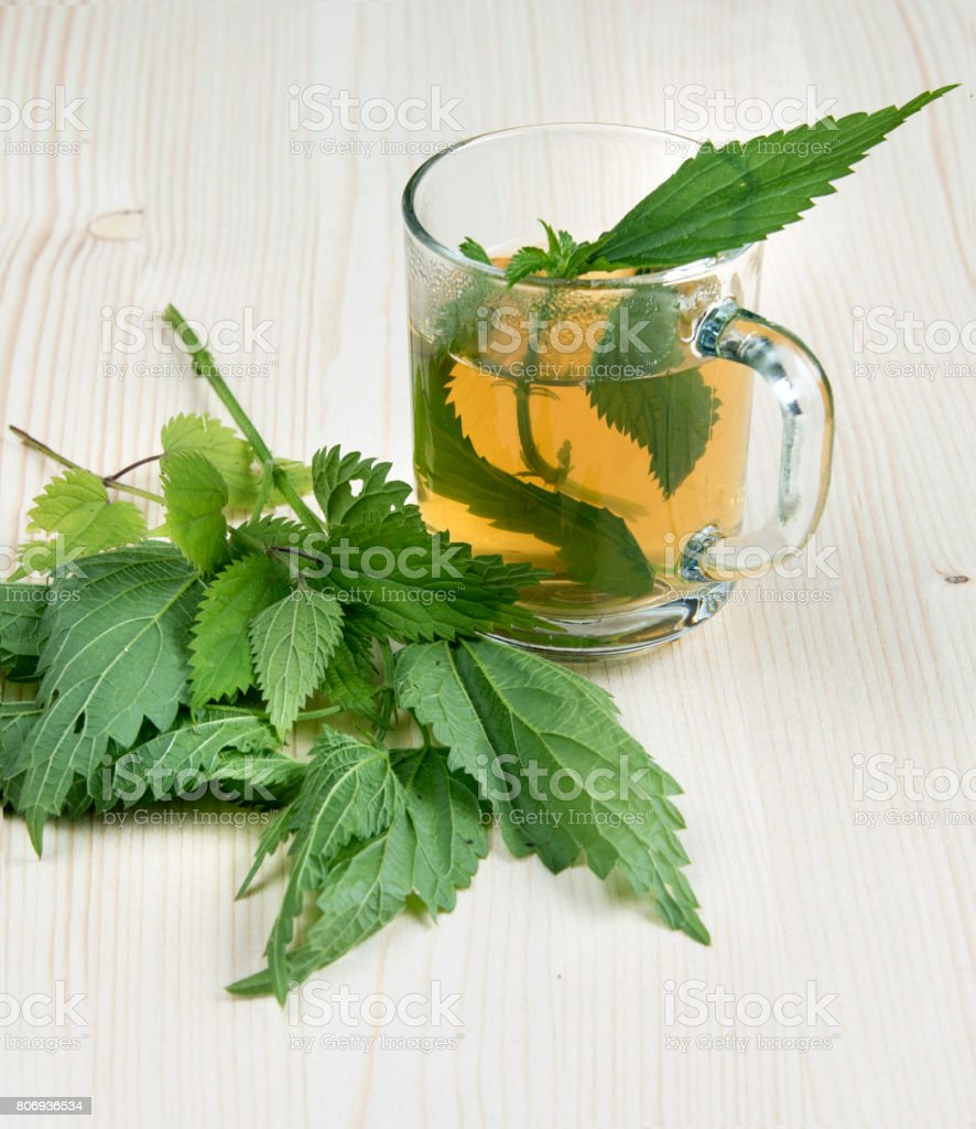 Nettle tea and some of nettle on the wooden table stock photo