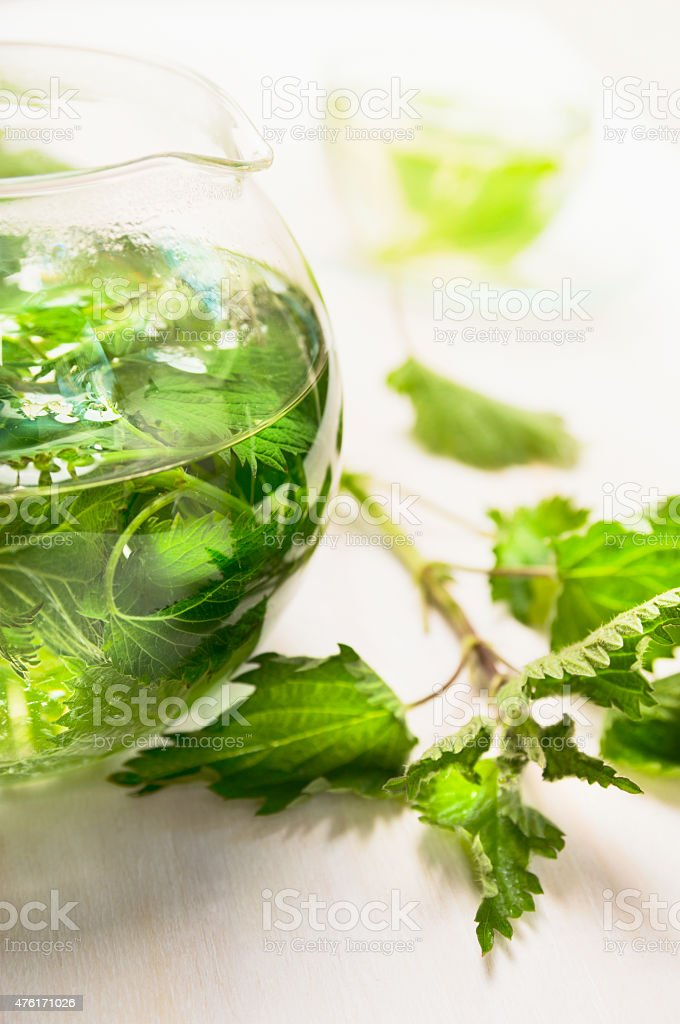nettle tea in glass teapot and fresh leaves , close up stock photo