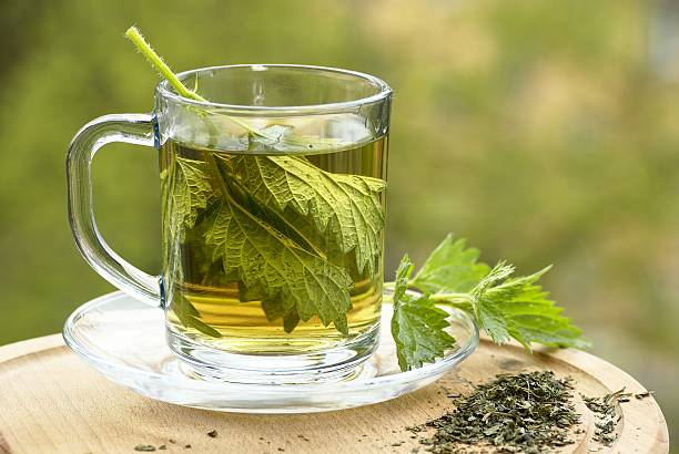Nettle tea Nettle tea in glass. Fresh and dry nettle. stinging nettle stock pictures, royalty-free photos & images