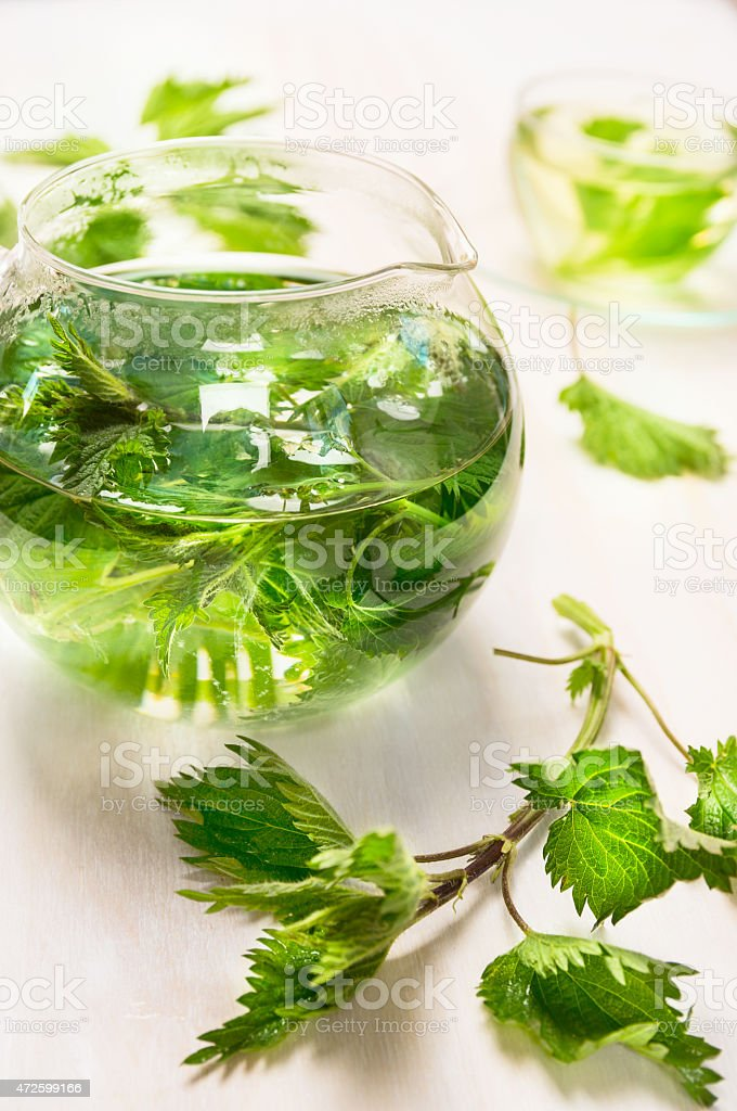 Nettle tea with glass pot  and cup  on wooden background stock photo