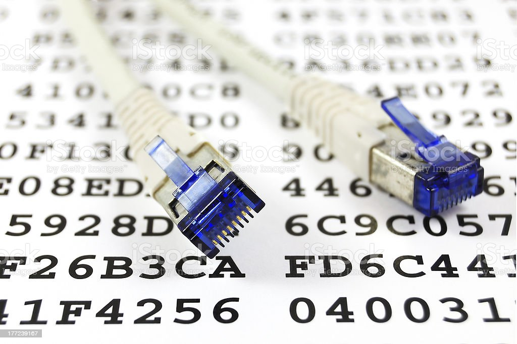 Network cable and encryption key royalty-free stock photo