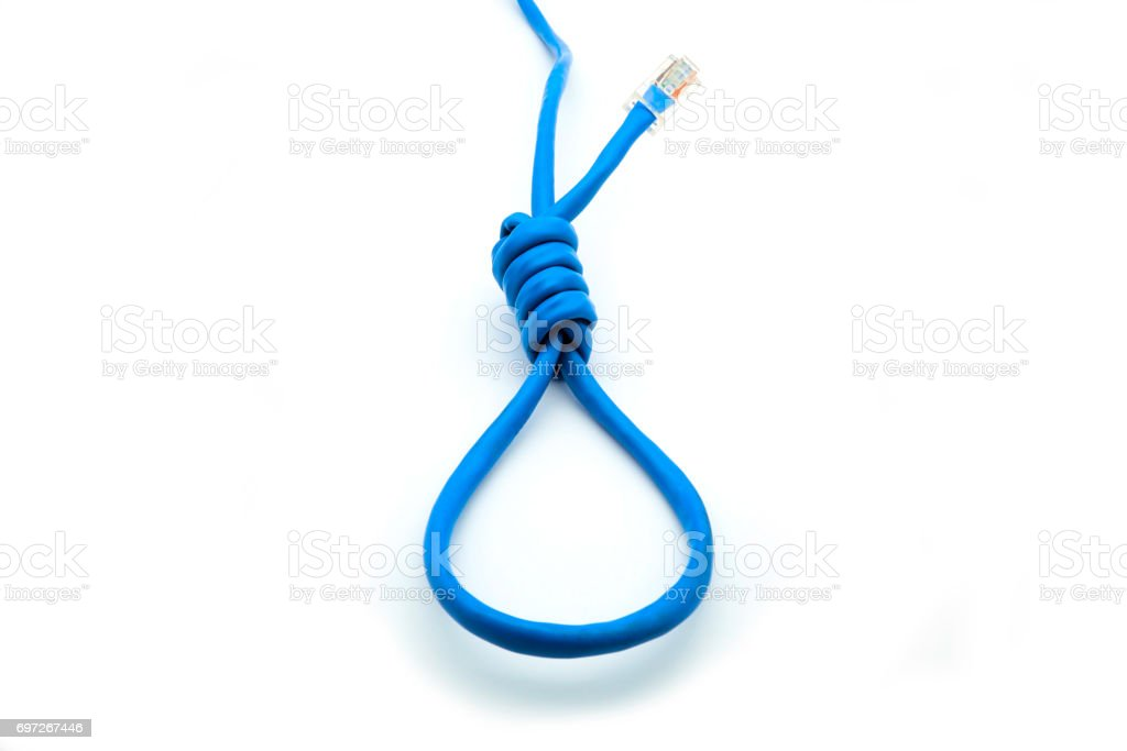 Network cable on white background stock photo