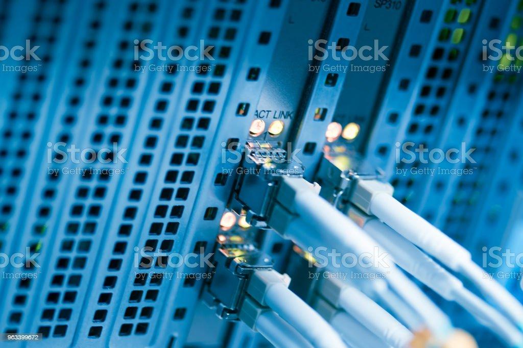 Kable sieciowe i zbliżenie koncentratora - Zbiór zdjęć royalty-free (Bez ludzi)