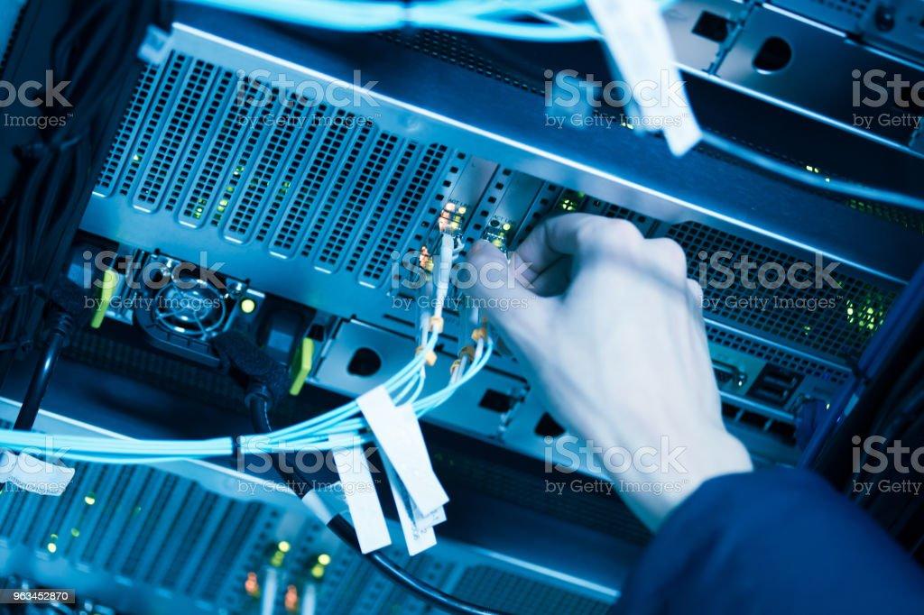 Ağ kabloları ve hub portre - Royalty-free Ağ Bağlantı Kablosu Stok görsel