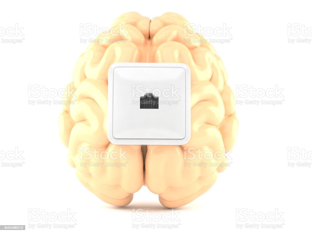 Network outlet on brain stock photo