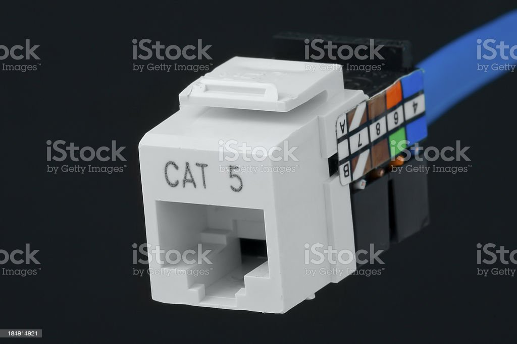 network plug for wall outlet cat 5 stock photo