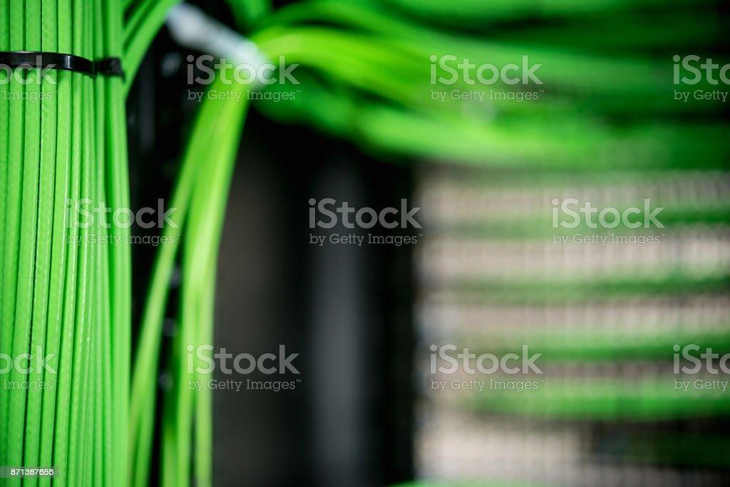 Vernetzte grüne Drähte gebunden in einem Bündel auf dem Server. – Foto