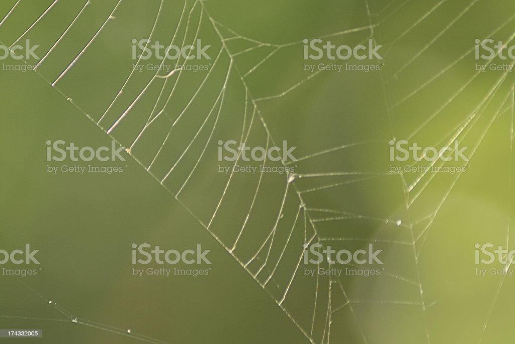Netz stock photo
