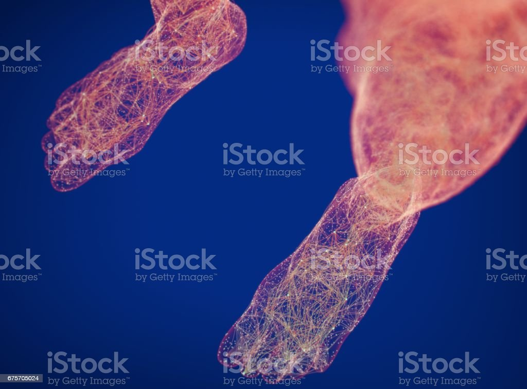 Neural connections concept. Human body neurology, nervous system. 3D illustration royalty-free stock photo